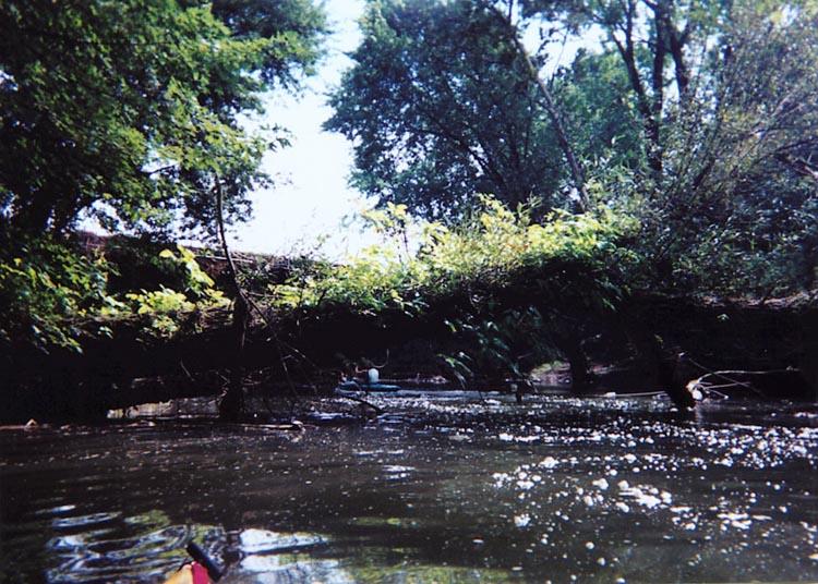 Little Juniata Creek.